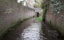 River Darent at Brasted
